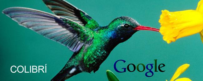 colibri-google